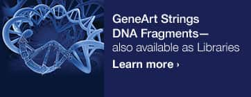 Our new GeneArt gene-to-protein guide
