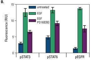 Multiplex in-cell ELISA results for STAT3, STAT6, EGFR