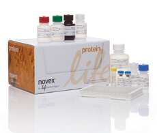 Neurobiology ELISA Kits