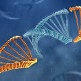 cell-engineering-genome-editing-2