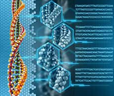 bioinformatics-professional-services-image
