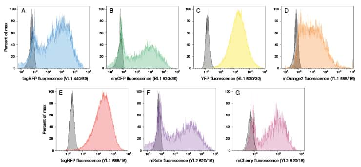 Histograms showing detection of a palette of fluorescent proteins using the Attune NxT Acoustic Focusing Cytometer