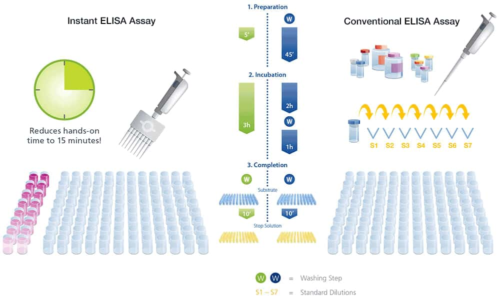 Overview of ELISA | Thermo Fisher Scientific - ZA
